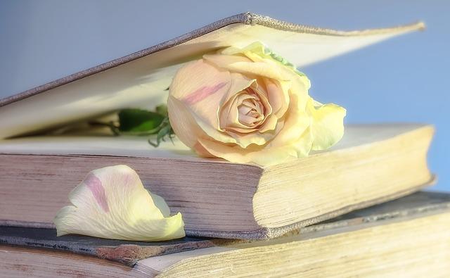 růže v knize.jpg