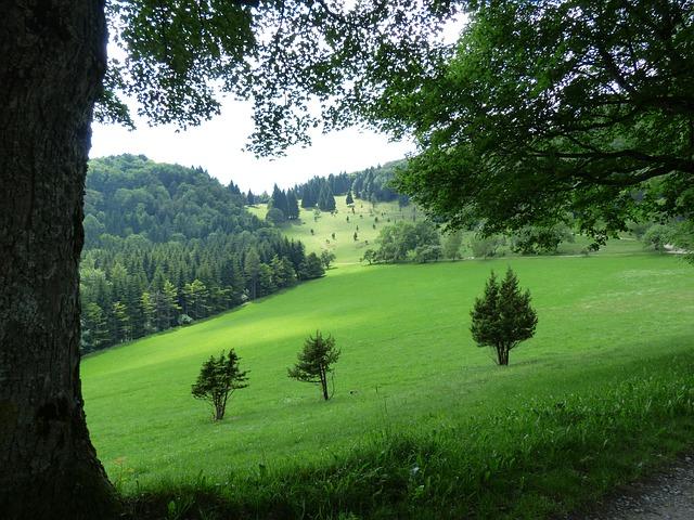 les v kopci